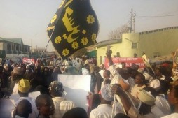 Rallies Held in Nigeria to Demand Shia Leader's Release